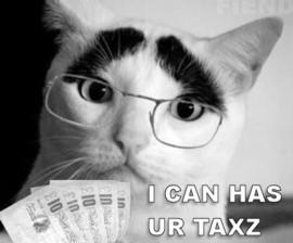 Cat That Looks Like Alistair Darling